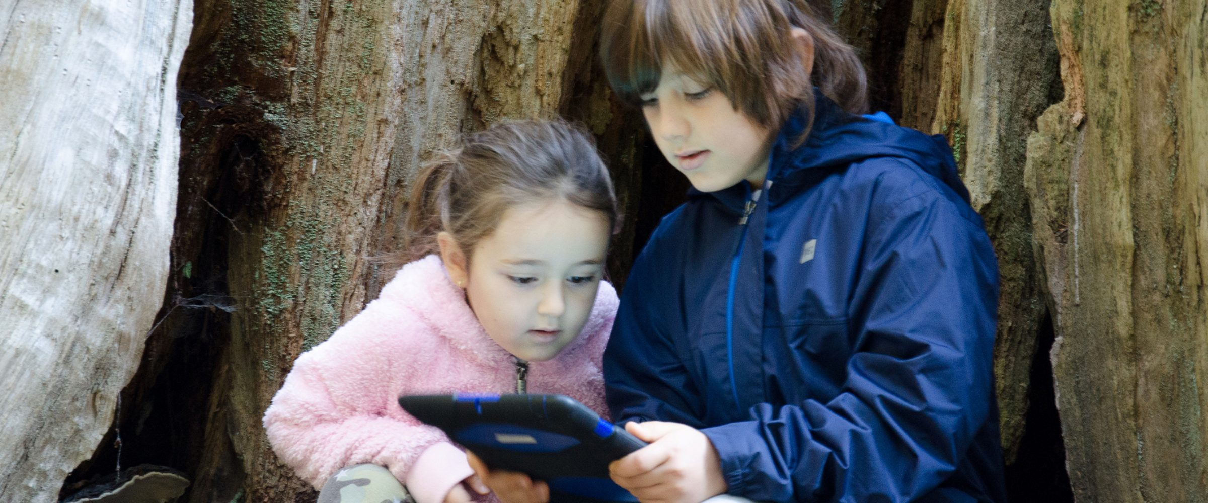 Two young children share a tablet device